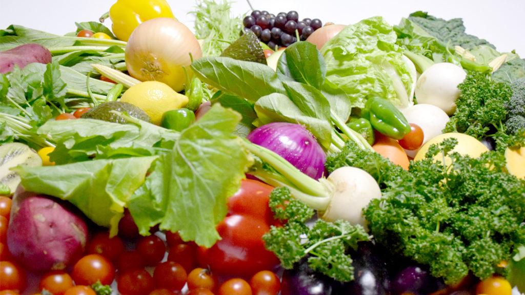 大量の野菜摂取イメージ